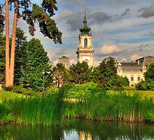 Festetics kastély (palace) II by zumi
