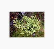 Green lichen at Waldheim, Cradle Mountain, Tasmania, Australia. Unisex T-Shirt