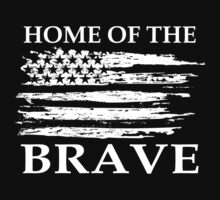 Home Of The Brave by johnlincoln2557