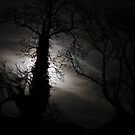 Bad Moon Rising by Steiner62