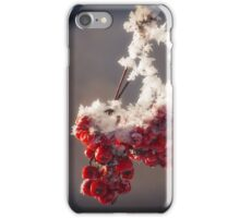 Berries in Ice iPhone Case/Skin
