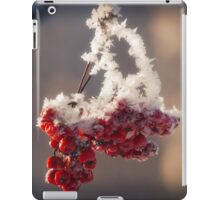 Berries in Ice iPad Case/Skin