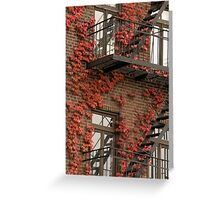 Fire Ivy. Bold Autumn Colors Greeting Card