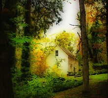 Home in the Woods by Barbara  Brown