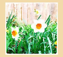 Painted Daffodils by eyly