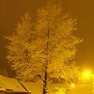 Snow Glow by ElsT