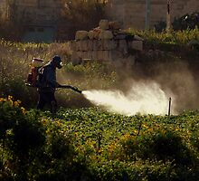 Spraying the Crops by Anthony Vella