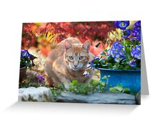 Red tabby cat amidst bright flowers Greeting Card