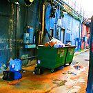 Garbage Alley by Christine Anna Wilson