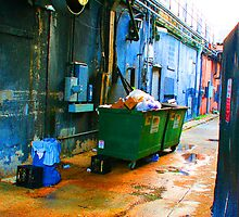 Garbage Alley by Christine Wilson