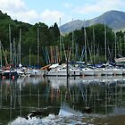 Marina on Derwentwater by Breo