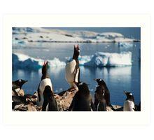 Penguins Antartica Art Print