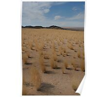 Grassy wide expanse and rocks Poster