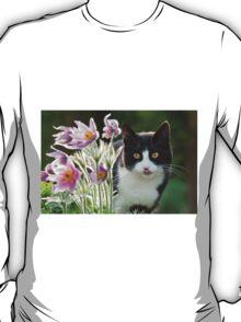 Cat looking through pasque flowers T-Shirt
