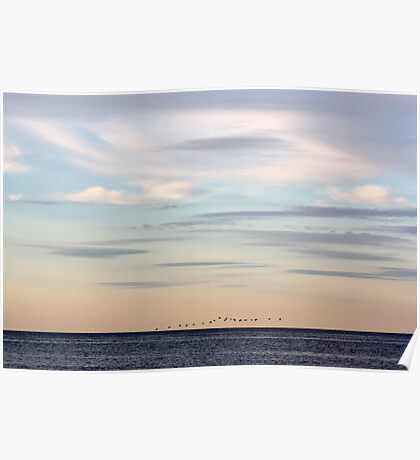 Flying South at Sunset Poster