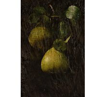 Perfect Pears Photographic Print