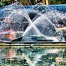 Water and Metal by Woomera
