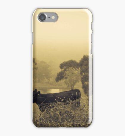 Autumn Serenity iPhone Case/Skin