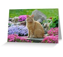Ginger Garden Cat Greeting Card