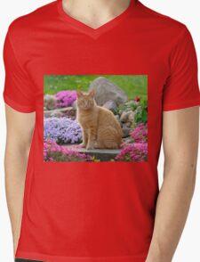 Ginger Garden Cat Mens V-Neck T-Shirt
