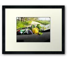 Sunday drive gathering flowers Framed Print