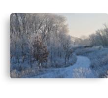 Frosty Morning Walk II  Canvas Print