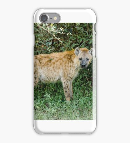 Spotted Hyaena iPhone Case/Skin