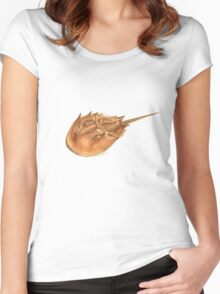 Horseshoe Crab (Limulus polyphemus) Women's Fitted Scoop T-Shirt