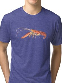 Northern Lobster (Homarus americanus) Tri-blend T-Shirt