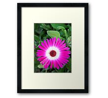 Fractal flower Framed Print