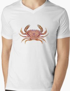 Dungeness Crab (Metacarcinus magister) Mens V-Neck T-Shirt