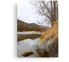 Reeds and Water Metal Print