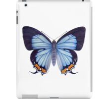 Imperial Blue Butterfly iPad Case/Skin