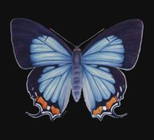 Imperial Blue Butterfly Kids Clothes