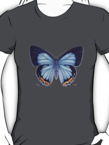 Imperial Blue Butterfly T-Shirt