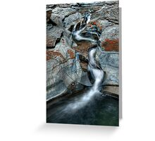 Silver Veil Greeting Card
