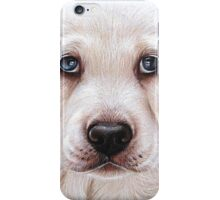 Lab pup iPhone Case/Skin