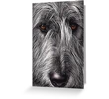 Wolfhound Greeting Card