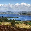 The Dornoch Firth by Jamie  Green