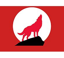Red Wolf Photographic Print