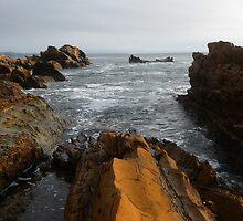 Earth Meets Sea by Selene Samuelsson