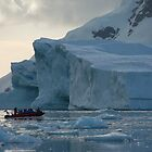Cruising the Antarctic by Greg Nairn