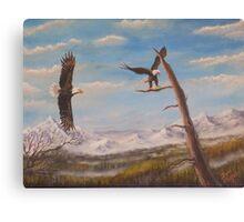 Circling Eagle. Canvas Print