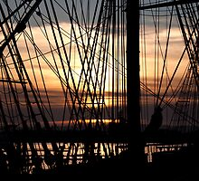 Knot for Sail by Donell Trostrud
