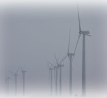 Windmills in the Fog by Alyce Taylor