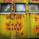 Green Train Door - Military Mail by Larry Costales