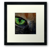 Window to Her Soul Framed Print