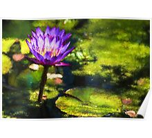 Waterlilies Impressions – Sunny Purple Pair Poster