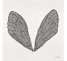 Black Cicada Wings Photographic Print