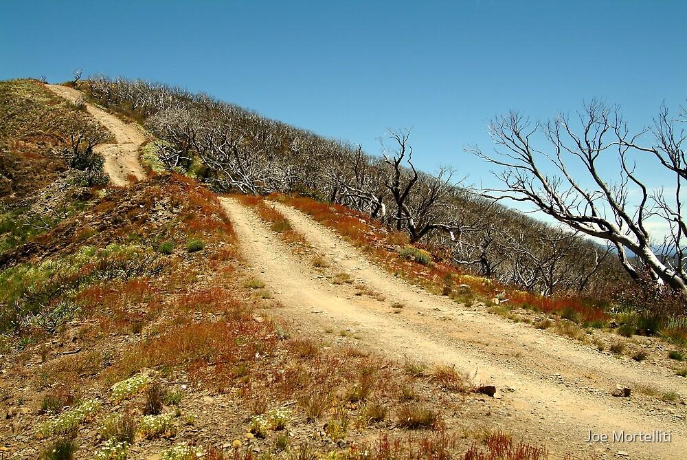 The Climb,Blue Rag Track by Joe Mortelliti